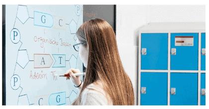 SmartBoard MX ekrāns un skolotāji