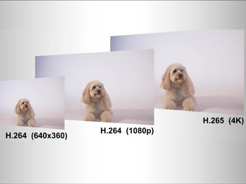 VC-A61P - A61P-Feature-Triple-stream-480.jpg